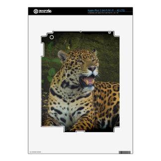 Jaguar Wild Cat Animal-Lover Electronics Skins Decals For iPad 3