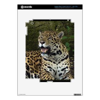 Jaguar Wild Cat Animal-Lover Electronics Skins iPad 3 Decals