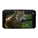 Jaguar Wild Cat Animal-Lover iPhone Case iPhone 3 Cover