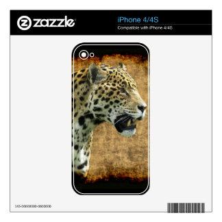 Jaguar Wild Cat Animal-Lover iPhone Skin iPhone 4 Decal