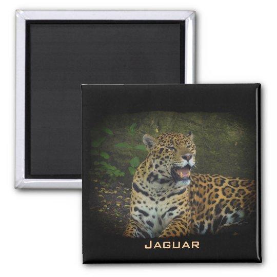 Jaguar Wild Cat Animal-Lover Magnet