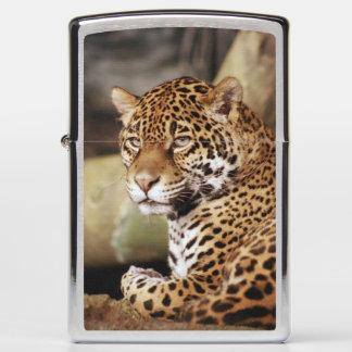 Jaguar Zippo lighter