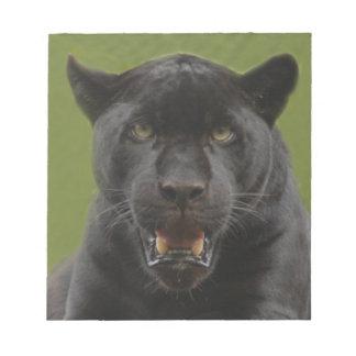 jaguarblack10x10 libretas para notas