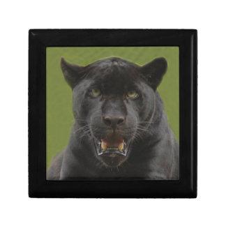 jaguarblack10x10 caja de recuerdo