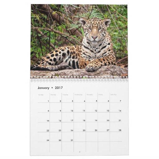 ¡Jaguares! Calendario de pared 2014