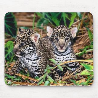 Jaguares del bebé tapetes de raton