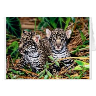 Jaguares del bebé tarjetón