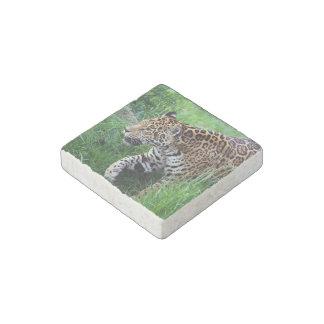 Jaguares Imán De Piedra