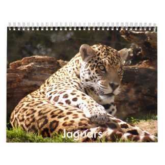 Jaguars Calendar, Jaguars