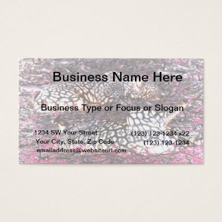 jaguars lying down purple black inverted business card