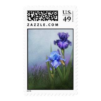"Jaguarwoman's ""Bearded Iris Postage I"""