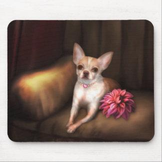 "Jaguarwoman's ""Chihuahua Portrait I"" Mouse Pads"