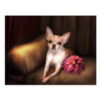 "Jaguarwoman's ""Chihuahua Portrait I"" Postcard"