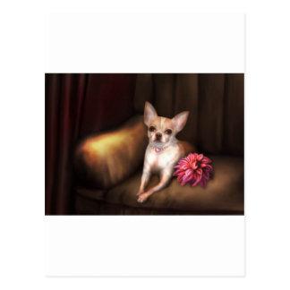 "Jaguarwoman's ""Chihuahua Portrait I"" Postcards"