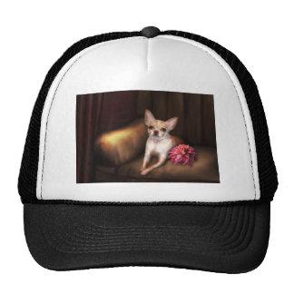 "Jaguarwoman's ""Chihuahua Portrait I"" Trucker Hats"