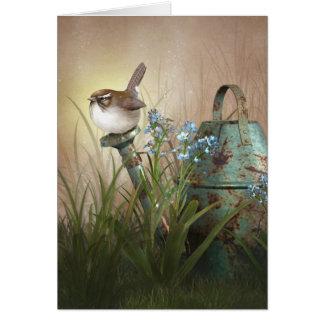 "Jaguarwoman's ""Indian Summer Garden With Wren"" Cards"