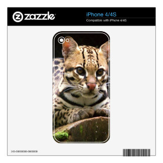 Jaguatirica iPhone 4S Skin