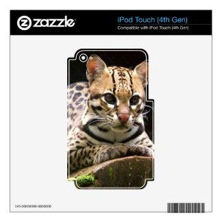 Jaguatirica iPod Touch 4G Calcomanías