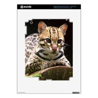 Jaguatirica Pegatinas Skins Para iPad 3