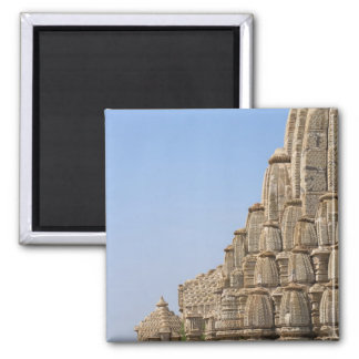 Jain temple in Chittorgarh Fort, India Magnet