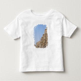 Jain temple in Chittorgarh Fort, India Toddler T-shirt