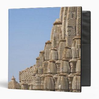 Jain temple in Chittorgarh Fort, India Vinyl Binders