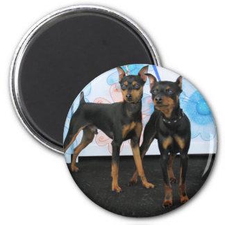 Jake & Elwood - Min Pin Magnet