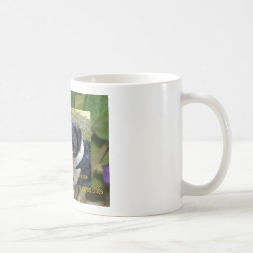 jake en una taza