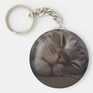 Jake the Cat Keychain