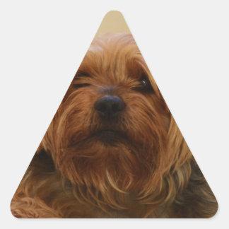 Jake The Yorkie Terrier Triangle Sticker