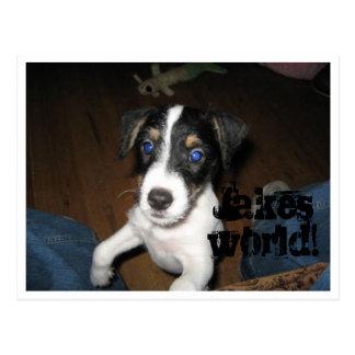Jakes world! postcard