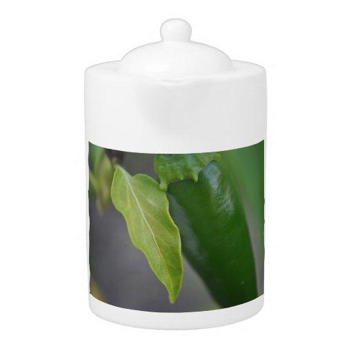 Jalapeno Teapot