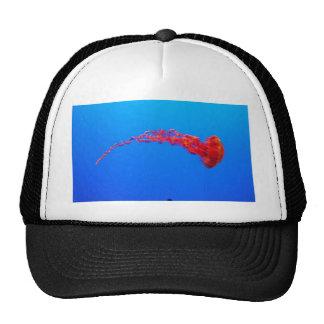 jalea roja gorros bordados
