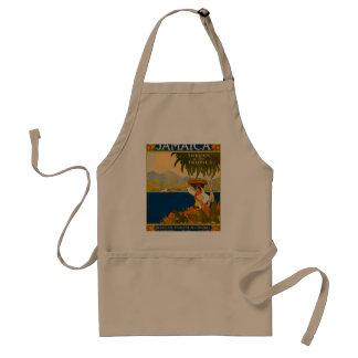 Jamaica, the gem of the tropics adult apron