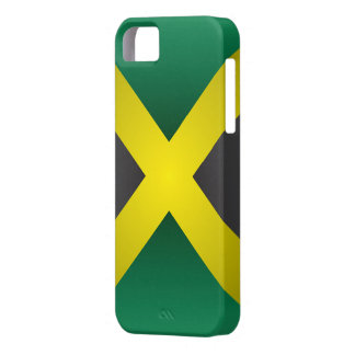 Jamaican flag case