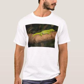 Jamaican giant anole T-Shirt