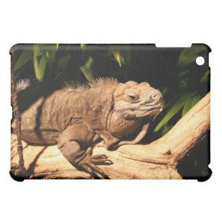 Jamaican Iguana, Cyclura collei, iPad Case