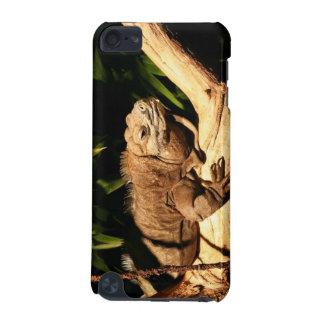 Jamaican Iguana, Cyclura collei, iPod case iPod Touch 5G Case