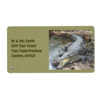 Jamaican Salt Water Crocodile Label