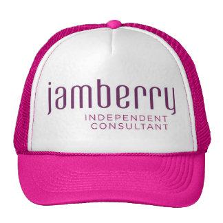 Jamberry plum and raspberry Trucker hat