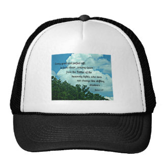 James 1:17 Every good and perfect gift is from.... Trucker Hat