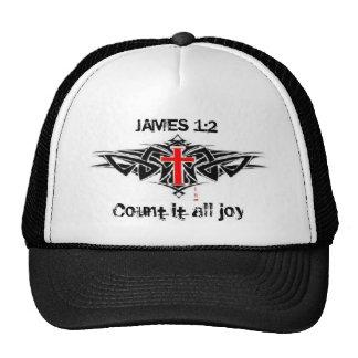 James 1:2 Count it all joy hat