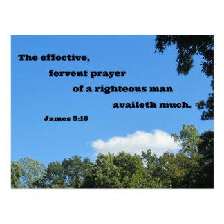 James 5:16 The effective, fervent prayer... Postcard