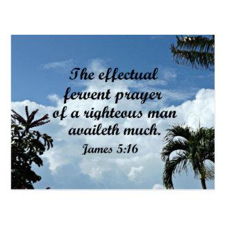 James 5:16 The effectual fervent prayer of Postcard
