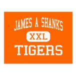 James A Shanks - Tigers - High - Quincy Florida Postcard