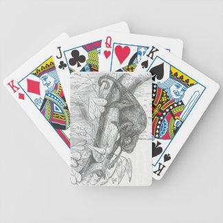 James Johonnot - Chameleon Playing Cards