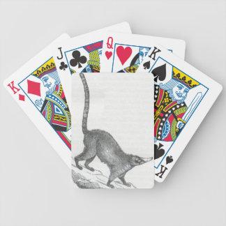 James Johonnot - Coati-Mondi Playing Cards