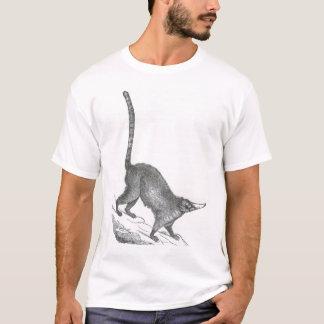 James Johonnot - Coatimondi T-Shirt