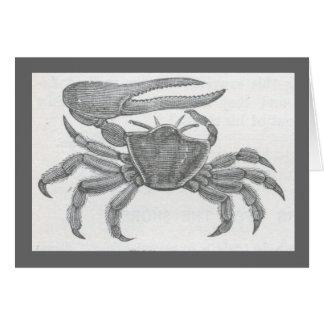 James Johonnot - Fiddler Crab Card