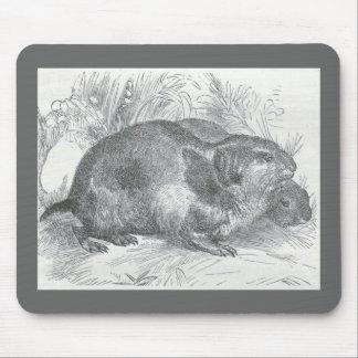 James Johonnot - Lemmings Mouse Pad